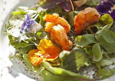 kochwerkstatt-salat-garnelen